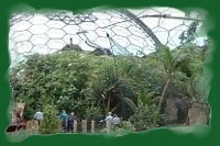Inside The Eden Biomes at St Blazey near St Austell